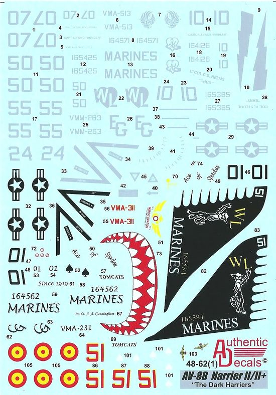 Authentic Decals 1/48 Modern US MARINES AV-8B Harrier II/II+ The Dark Harriers # 48-62